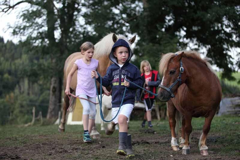 mit-dem-pony-unterwegs
