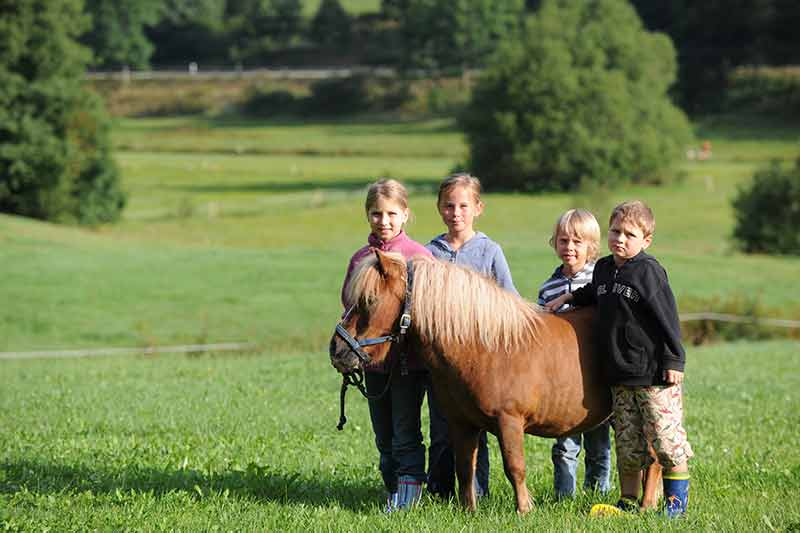 unser-suesses-pony